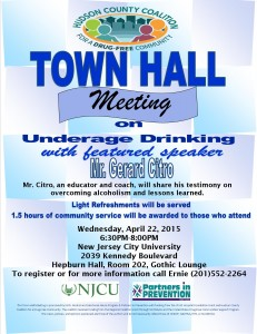2015 Town Hall Meeting Flyer Professional